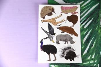 Amazing Animal Tattoo Sheet - Echidna Set