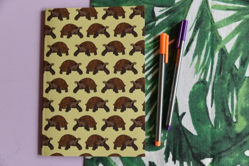 Galapagos Tortoise A5 Notebook