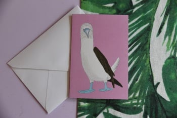 Blue Footed Booby Card