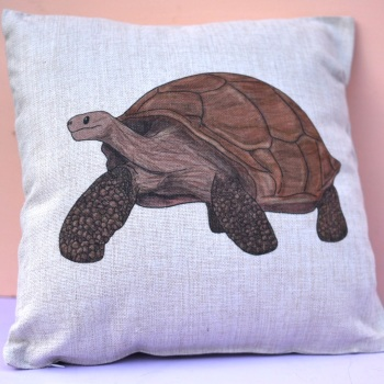 Galapagos Tortoise Cushion
