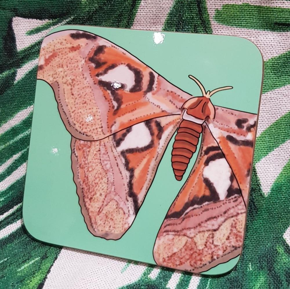 Atlas Moth coaster
