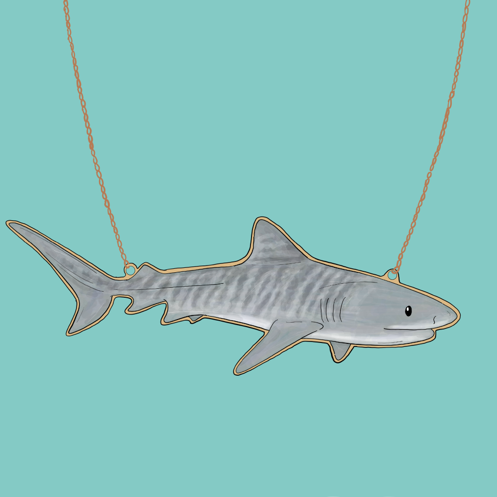 Preorder Tiger Shark Necklace