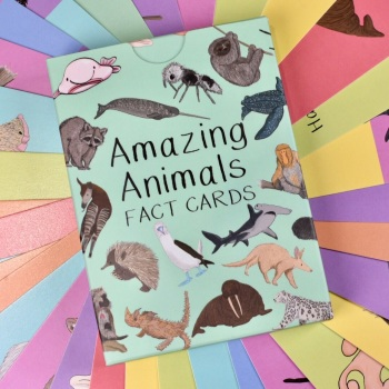 Amazing Animal Fact Cards Set 1