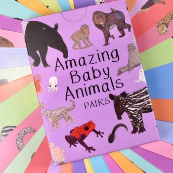 Amazing Baby Animals Pairs Cards