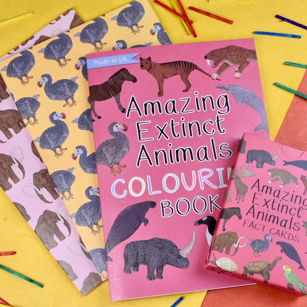 Gift Set - Amazing Extinct Animals, Fact Cards, Colouring Book and Notebook