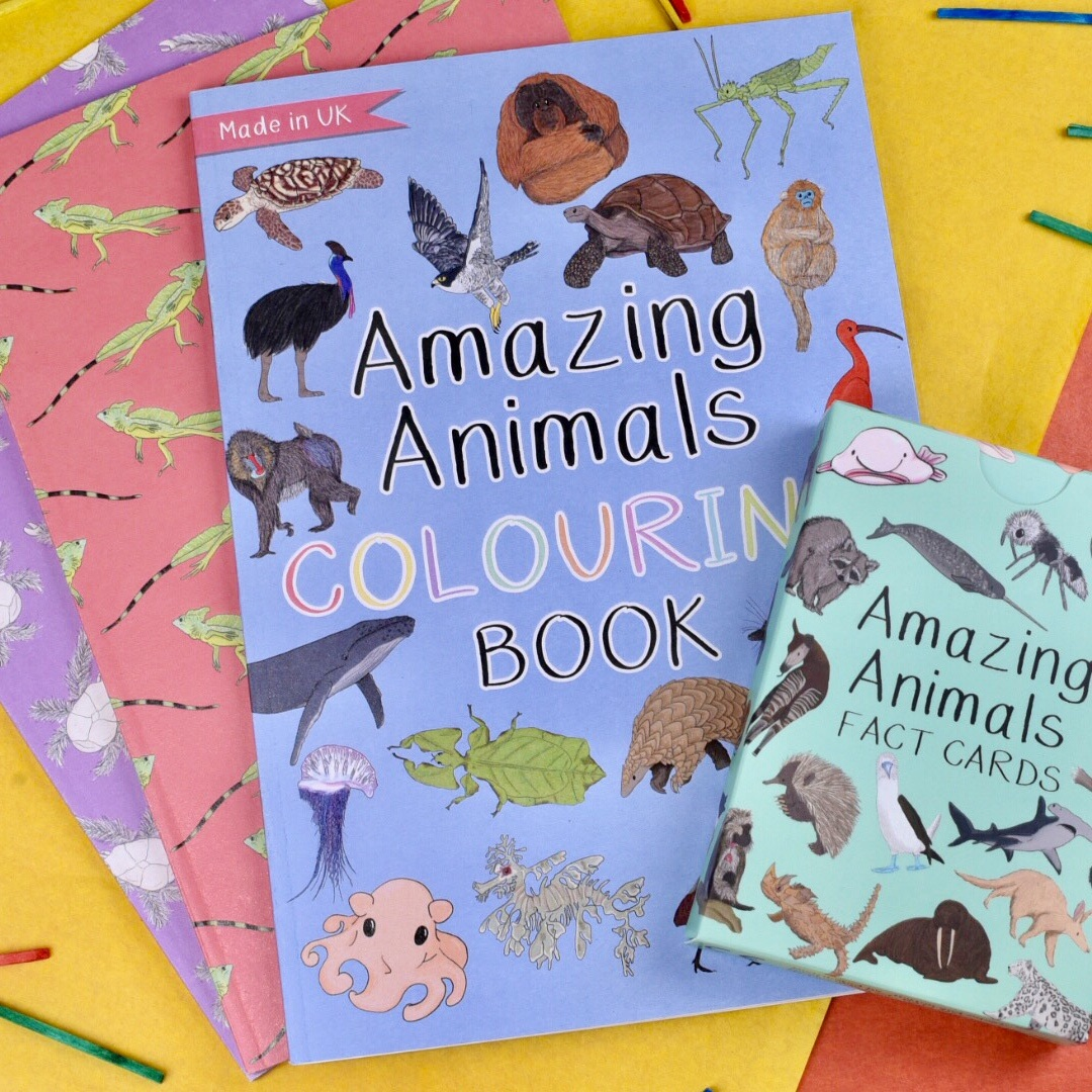 Gift Set - Amazing Animals Fact Cards, Colouring Book and Two Notebooks