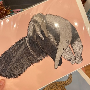 A4 Giant Anteater Mother and Baby Print
