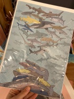 A4 Shark Finning Print