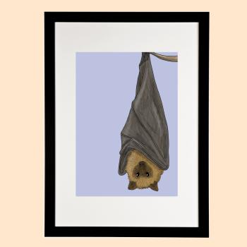 Flying Fox Print - Amazing Animals of Australia Collection