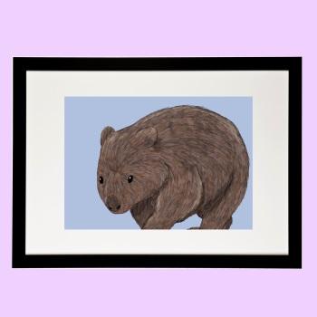 Wombat  Print - Amazing Animals of Australia Collection