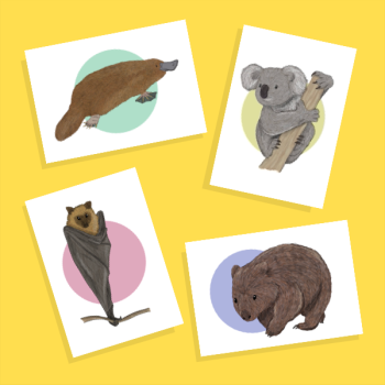 Set of Australian Animal greetings cards