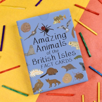 Amazing Animals of the British Isles Fact Cards
