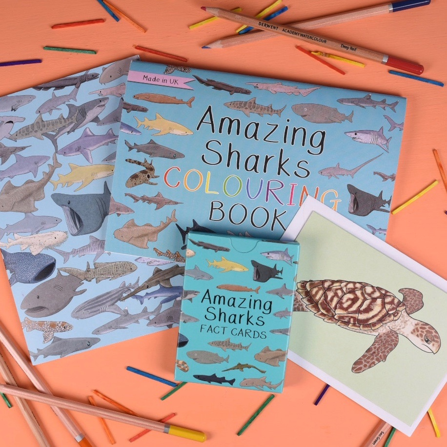 Amazing Sharks Gift Set