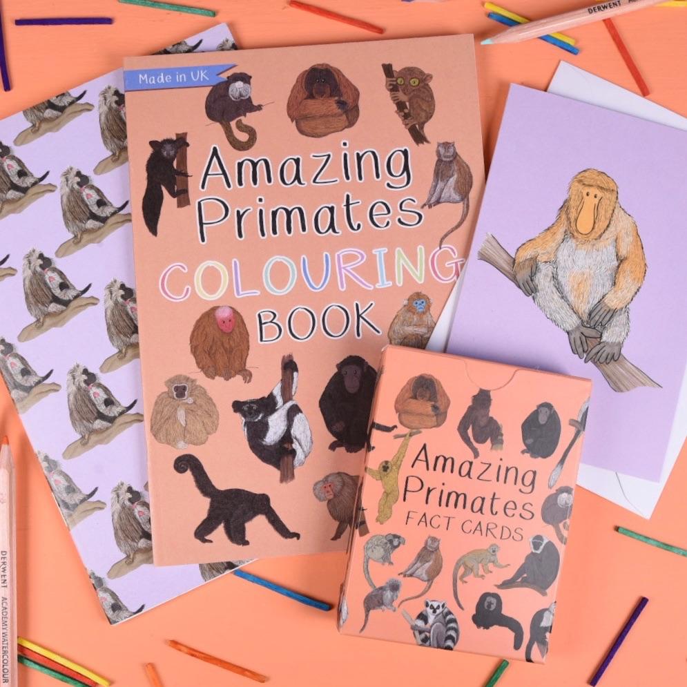 Amazing Primates Gift Set