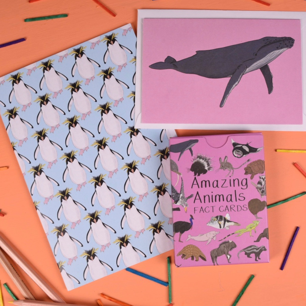 Amazing Animals Set Two Gift Set