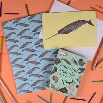 Amazing Animals Set One Gift Set
