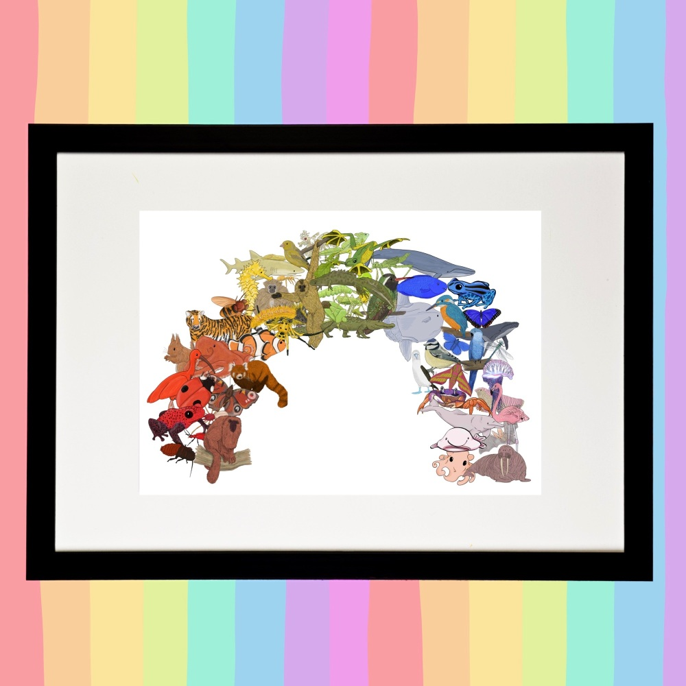 Rainbow of Amazing Animals Print - Available in A4 and A3