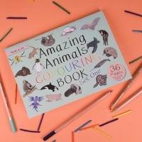 Amazing Animals Set One Colouring Book