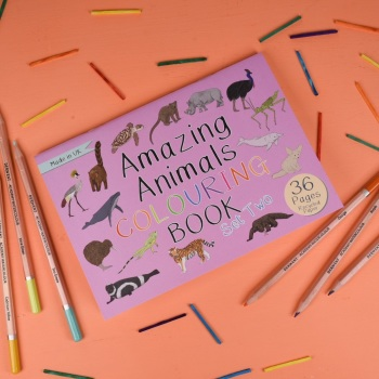 Amazing Animals Set Two Colouring Book