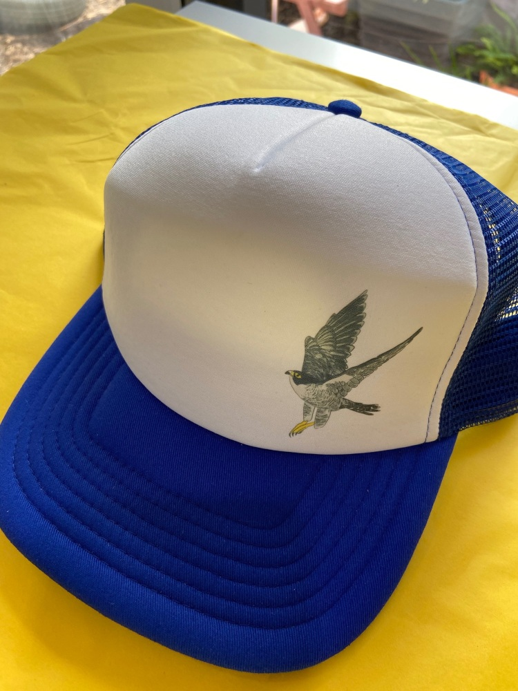 Kids Hat - Peregrine Falcon