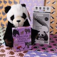 Amazing Panda Gift Set