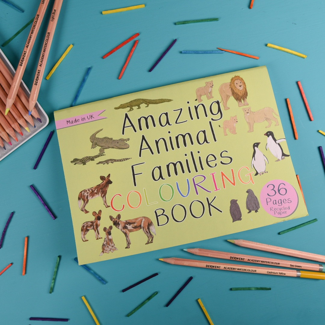 Preorder - Amazing Animal Families Colouring Book