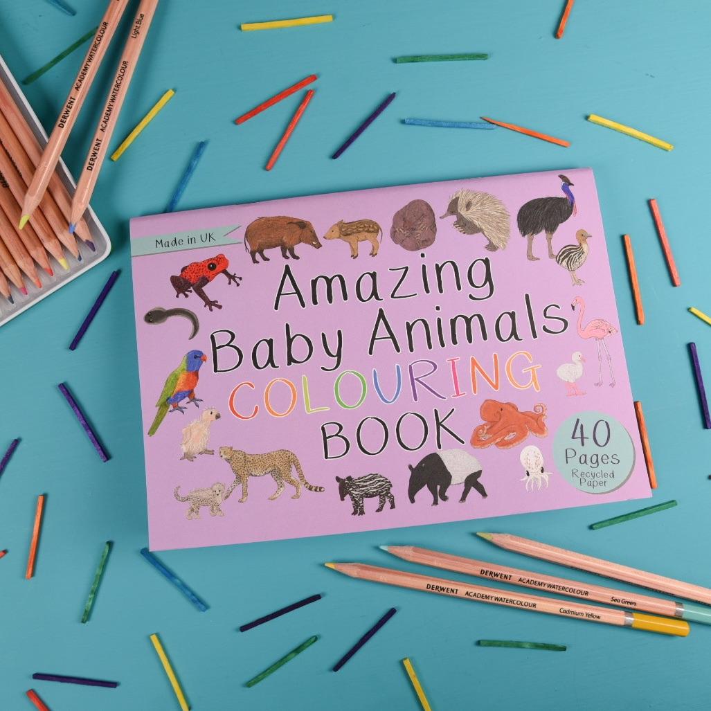 Preorder - Amazing Baby Animals Colour Book