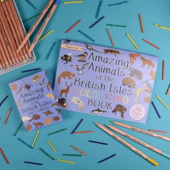 Amazing Animals of the British Isles Fact Cards and Colouring Book