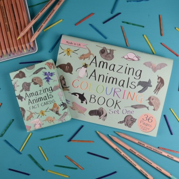 Amazing Animal Fact Cards Set 1 and Colouring Book