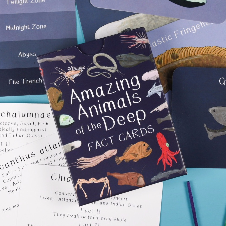 Preorder - Amazing Animals of the Deep Fact Cards