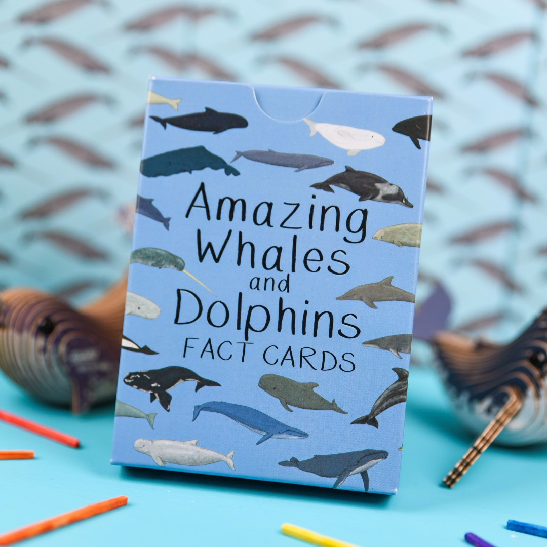 Preorder - Amazing Whales and Dolphin Fact Cards