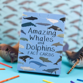 Amazing Whales and Dolphin Fact Cards
