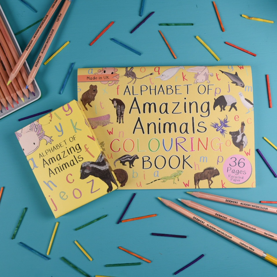Alphabet of Amazing Animals Flash Cards and Colouring Book