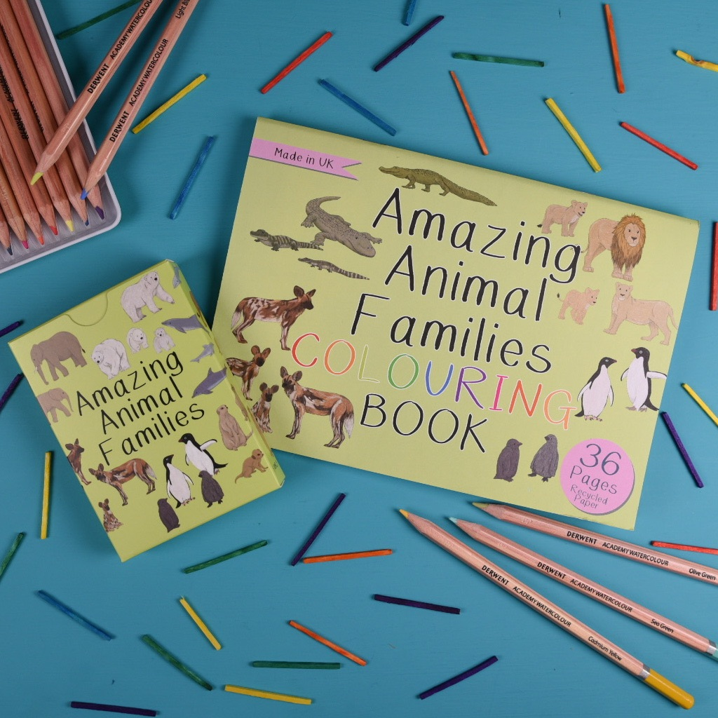 Amazing Animal Families Card Game and Colouring Book