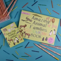 Amazing Animal Families Game and Colouring Book