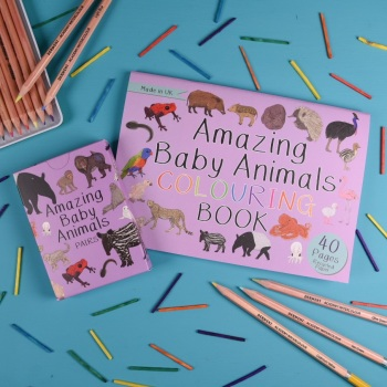 Amazing Baby Animals Pairs Cards and Colouring Book