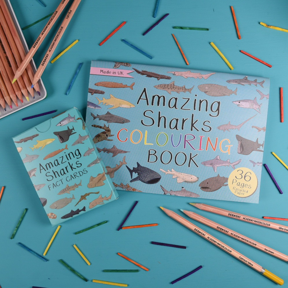 Amazing Sharks Fact Cards and Colouring Book