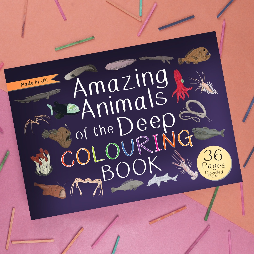 Preorder - Amazing Animals of the Deep Colouring Book