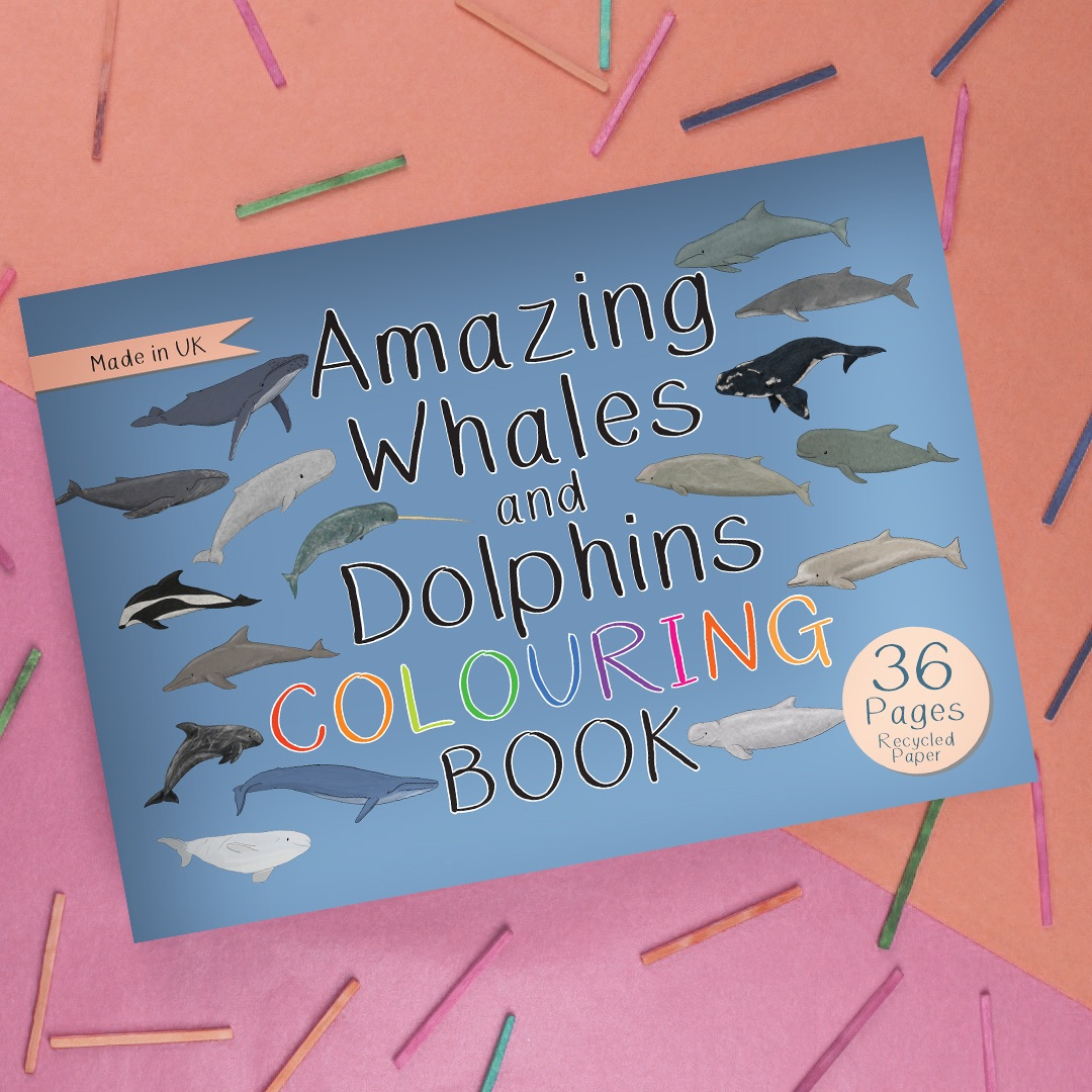 Preorder - Amazing Whales and Dolphins Colouring Book