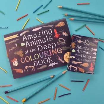 Amazing Animals of the Deep Fact Cards and Colouring Book