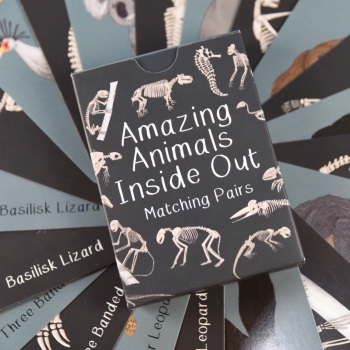 Amazing Animals Inside Out Pairs Card Game