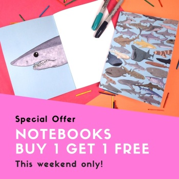 Buy One Get One Free - 2 Notebooks for £5!!!
