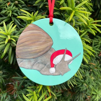 Giant African Land Snail Christmas Decoration
