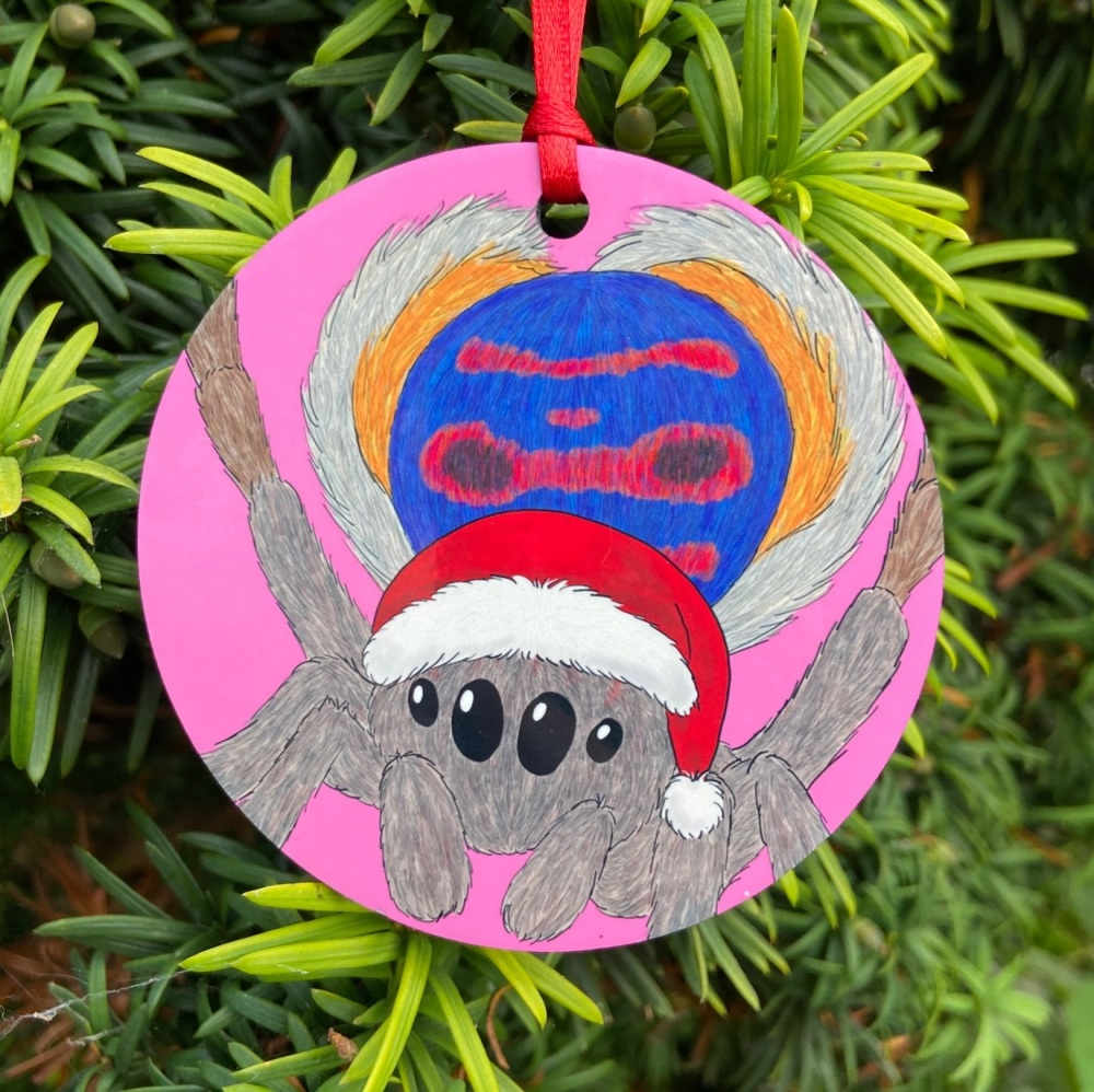 Peacock Spider Christmas Decoration