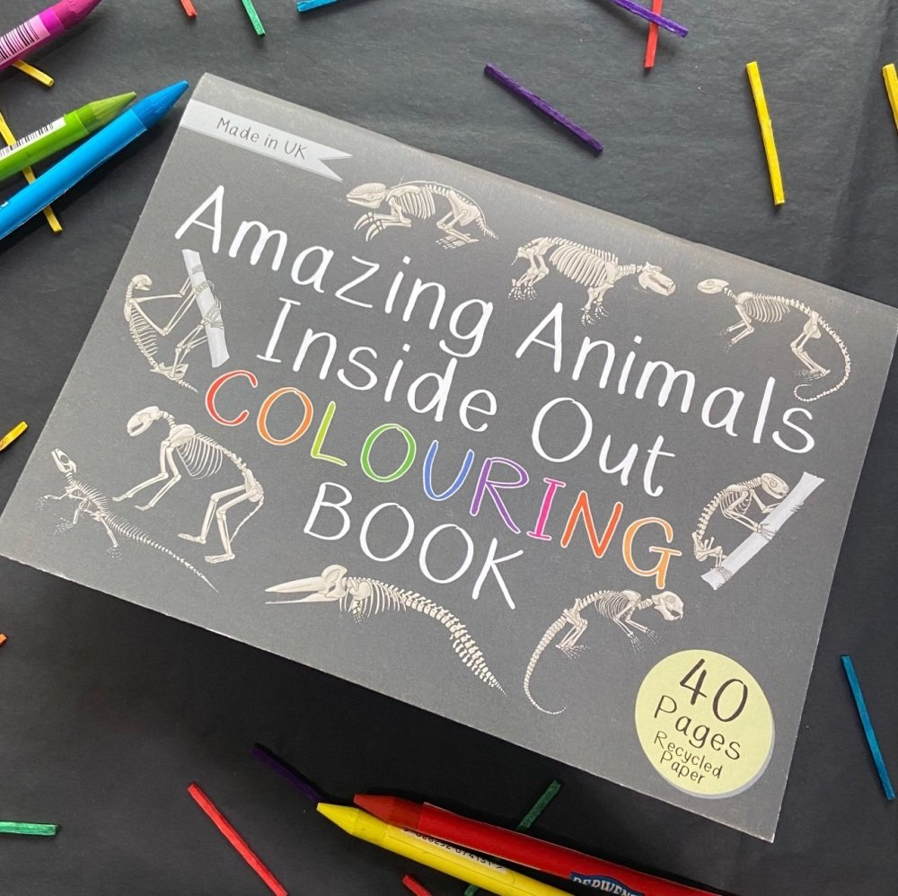 Amazing Animals Inside Out Colouring Book