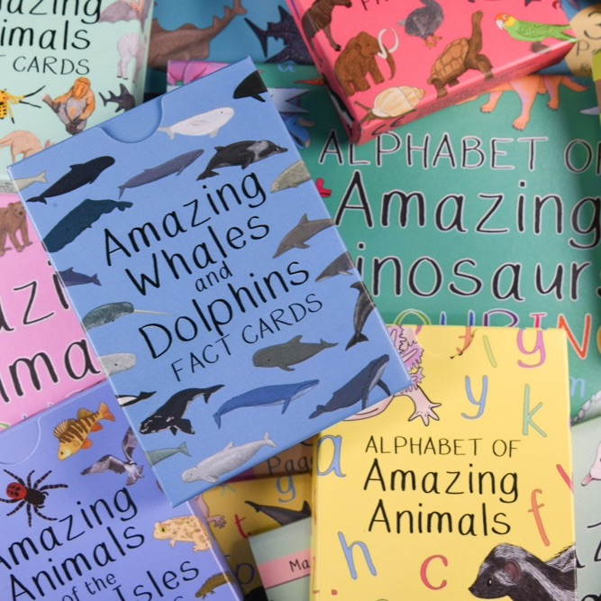 Amazing Animals Range