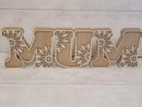 Decorative Mum