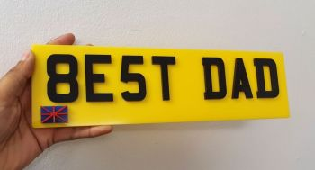 Fake License Plate Plaque (Blank)