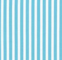 Tribeca Stripe in Aqua - C3436A