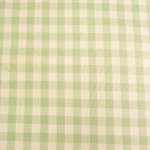 Dusty Mint Gingham RS0138-122/222